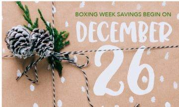 Boxing Week Sale! 50% 0ff!